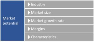 Market potential is key to business valuation